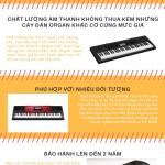 [Inforgraphic] 5 lý do bạn nên mua đàn organ Casio