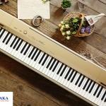 nhac-cong-phil-okeefe-danh-gia-dan-piano-dien-casio-px160-11