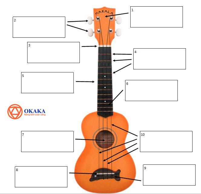 """Tiếng Anh chuyên ngành âm nhạc luôn là thách thức lớn với hầu hết những ai đang học tập trong ngành âm nhạc hay theo đuổi con đường dịch thuật. Trau dồi tiếng Anh về âm nhạc thường xuyên sẽ giúp trình ngoại ngữ của bạn về lĩnh vực này tăng vù vù đấy! Hôm nay, OKAKA Music gửi tới bạn """"Từ vựng các bộ phận đàn ukulele qua hình ảnh"""". Mời bạn theo dõi!"""