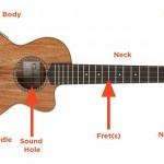 Tiếng Anh chuyên ngành âm nhạc (Phần 3) – Từ vựng các bộ phận đàn ukulele qua hình ảnh