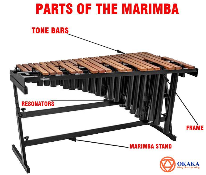 """Tiếng Anh chuyên ngành âm nhạc luôn là thách thức lớn với hầu hết những ai đang học tập trong ngành âm nhạc hay theo đuổi con đường dịch thuật. Trau dồi tiếng Anh về âm nhạc thường xuyên sẽ giúp trình ngoại ngữ của bạn về lĩnh vực này tăng vù vù đấy! Hôm nay, OKAKA Music gửi tới bạn """"Từ vựng các bộ phận đàn marimba (mộc cầm) qua hình ảnh"""". Mời bạn theo dõi!"""