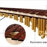 Tiếng Anh chuyên ngành âm nhạc (Phần 4) – Từ vựng các bộ phận đàn marimba (mộc cầm) qua hình ảnh