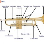Tiếng Anh chuyên ngành âm nhạc (Phần 6) – Từ vựng các bộ phận kèn trumpet qua hình ảnh