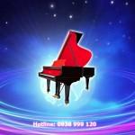 Địa điểm cho thuê đàn piano biểu diễn sân khấu chất lượng ở đâu?