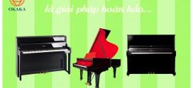 Thuê đàn piano là giải pháp hoàn hảo nếu bạn…