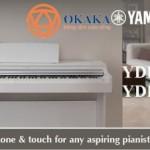 Với dòng piano điện Arius, Yamaha đã mang đến cho người mới bắt đầu và cả những người chơi trung cấp (lẫn cao cấp) cảm giác và âm thanh của những cây grand piano dành cho hòa nhạc. Yamaha đã tích hợp nhiều tính năng tuyệt vời nhất – yếu tố quyết định giá cả và kích thước của một cây đàn piano cơ thực sự – vào những model đàn piano điện Yamaha dòng Arius.